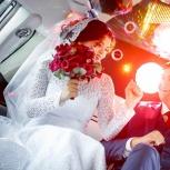 ведущий и диджей на свадьбу, юбилей, корпоратив, Новосибирск
