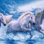 """Алмазная мозайка """"белые лошади"""" 50х40 см, Новосибирск"""