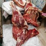 Мясо говядина, Новосибирск