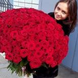 букет из 51 розы  60- 70см с бесплатной  доставкой, Новосибирск