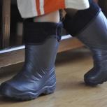 Легкие резиновые сапоги лемиго lemigo Польша на мальчика, Новосибирск