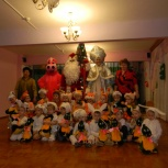 Дед Мороз и Снегурочка! В детский сад -в школу-на дом, мероприятия, Новосибирск