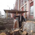 Снос (спил) аварийных деревьев, Новосибирск