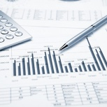 Анализ финансового состояния организации, Новосибирск