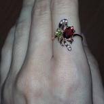 Золотое кольцо новое, Новосибирск