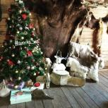 Искусственные новогодние елочки от 150 до 240 см, Новосибирск