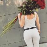 Розы Метровые. 51 роза. Акция. Букеты. Цветы. Розы, Новосибирск