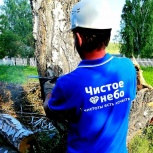 Спил, снос, обрезка деревьев, Новосибирск