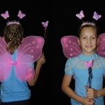 крылья бабочки, Новосибирск