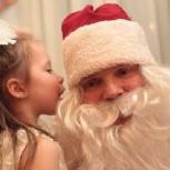 Аниматоры. Дед Мороз и Снегурочка на дом, Новосибирск