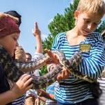 Выездные квесты для детей на день рождения, Новосибирск