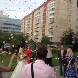Ведущая на Ваш незабываемый вечер!, Новосибирск