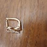 Найдена золотая серёжка, Новосибирск