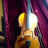 Скрипка Caprice 1/2 (2008 г.), Новосибирск
