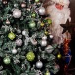 Дед мороз на ваш праздник, Новосибирск