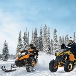 права трактор, снегоход, квадроцикл, Новосибирск