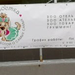 """Зоо Отель для  мелких пород  собак """"ВертиХвостка"""", Новосибирск"""