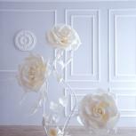 Ростовые цветы для оформления витрин, Новосибирск