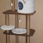 Домик для кошек, Новосибирск