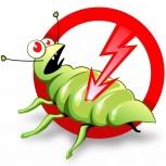 Дезинсекция (клопы, тараканы, муравьи, клещи), Новосибирск