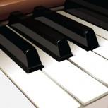 Настройщик пианино (фортепиано), регулировка, Новосибирск
