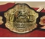 Пояс чемпиона UFC, Новосибирск
