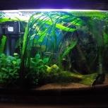 Продам действующий аквариум JEBO R 362 KG, Новосибирск