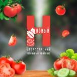 Логотип, фирменный стиль, Новосибирск