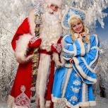 Дедушка Мороз и Снегурочка, Новосибирск