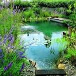 Райский уголок в Вашем Саду, Новосибирск