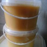 Мёд светлы, Новосибирск
