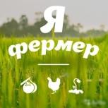 Ищем инвестора в расширение бизнеса, Новосибирск