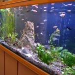 Продам аквариум Jebo r280, 450 л., Новосибирск
