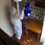Уничтожение тараканов, клопов, клещей, Новосибирск