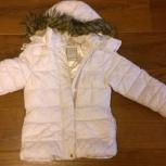 Куртка на европейскую зиму или сибирскую осень, Новосибирск