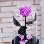 Сиреневая роза в колбе premium 28 см, Новосибирск