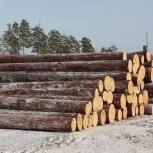 Сборка срубов из бруса или бревна плотницкие столярные работы, Новосибирск
