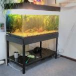 Продам аквариум с оборудованием, Новосибирск