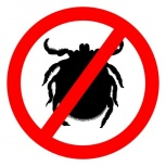 Избавим от клещей, комаров, мошек, Новосибирск
