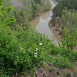 Бердские скалы, Новосибирск