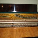Пианино Тверца, Новосибирск