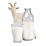 Козье молоко, Новосибирск