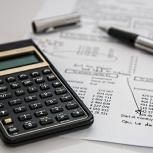 Бюджетирование/составление бюджета, Новосибирск