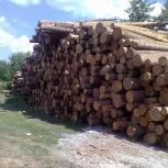 Деревообрабатывающий бизнес, Новосибирск