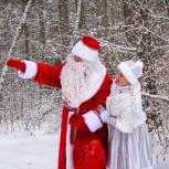 Дед Мороз и Снегурочка для Ваших малышей. Бердск., Новосибирск