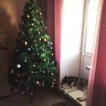 Искусственная елка (сосна пушиста) - 210 см + гирлянда, Новосибирск