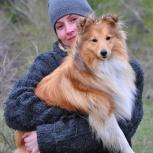 Кинолог. Дрессировка собак, Новосибирск