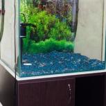 Продам аквариум 100л с тумбой + аквариум на 10л, Новосибирск