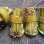 непромокаемые ботиночки Zhixin для собаки мелкой породы, размер 0, Новосибирск