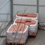 Укладка тротуарной плитки (требуется)., Новосибирск